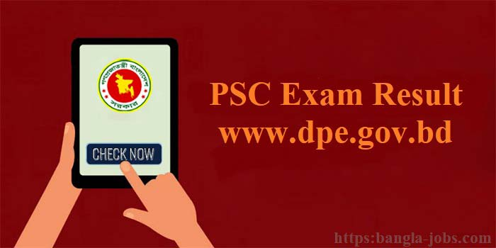 PSC Exam Result | www dpe gov bd
